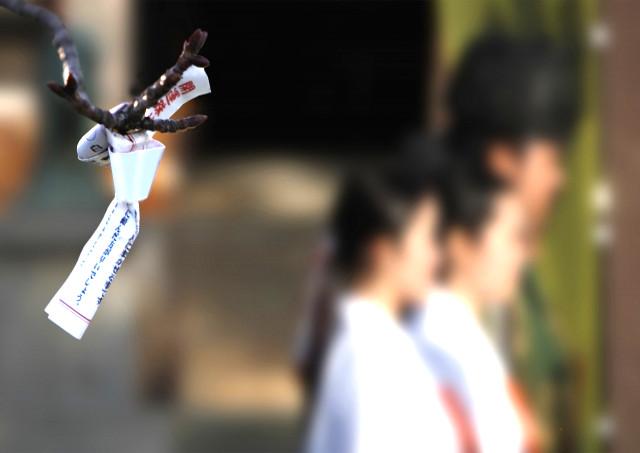 群馬で神社をお探しなら蝋梅が咲く「雷電神社」へ!厄除け・方位除け・交通安全祈願・安産祈願など様々な御祈祷に対応しています
